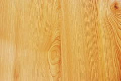 cypress panel