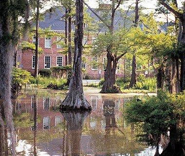 Cypress Lake And University of Louisiana Share 114-Year History, Lafayette, Louisiana